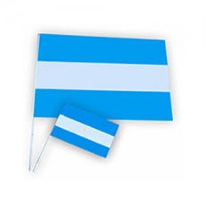 Bandera argentina N°1